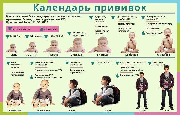 календарь прививок детям